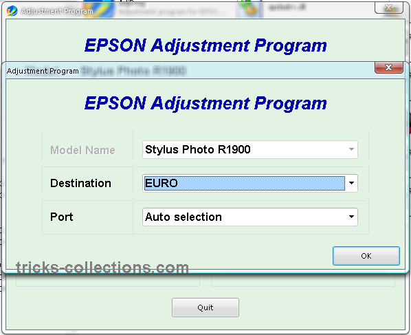 Adjustment Program Epson R1900     Resetter Epson R1900