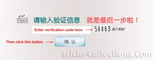 KIS-2011-verification-code