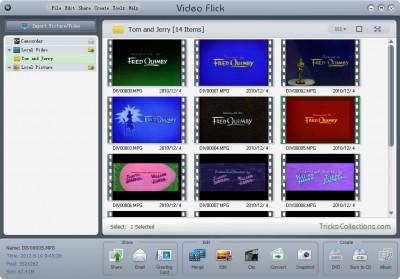 BlazeVideo-VideoFlick
