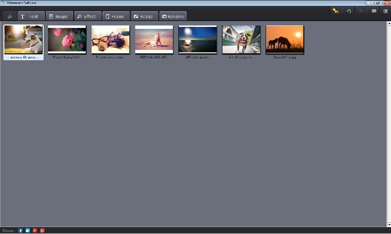2015 New Watermark Software V8.0 & Video to Picture FREE PACK